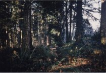 Image of 2002.131.002 - Print, Photographic