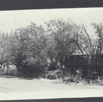 Image of 1950.73.1 - Photograph
