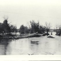 Image of 1978.22.42 - Photograph