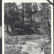 Image of 1979.73.34 - Photograph