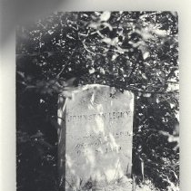 Image of 1980.2.108 - Photograph