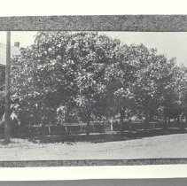 Image of 1980.2.291 - Photograph