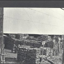 Image of 1980.51.29ab - Photograph