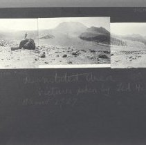 Image of 1981.44.1 - Photograph