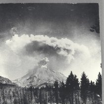 Image of 1981.65.1 - photograph