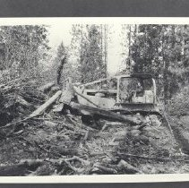 Image of 1982.63.19 - Photograph