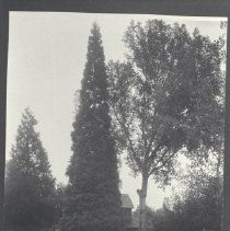 Image of 1989.27.5 - Photograph