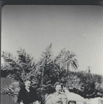 Image of 1975.1.409 - Unknown
