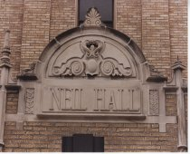 Image of Neil Hall (pic 10)
