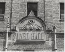 Image of Neil Hall (pic 7)
