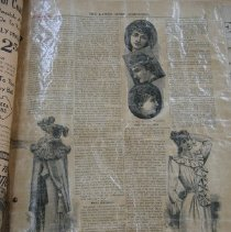 Image of Newspaper - The Ladies Home Companion