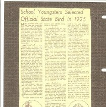 Image of School Youngster Select State