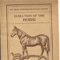 Image of Evolution of the horse book