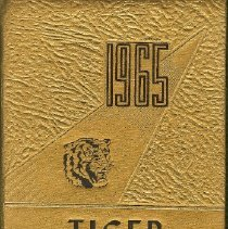 Image of 1965 Tiger