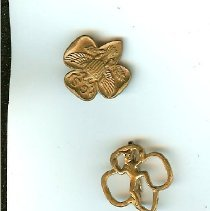Image of S. Lauer's Girl Scout pins