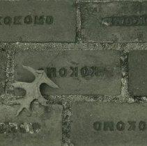 Image of 2000.029.0012 - Print, Photographic