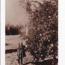 Image of McKevett, Helen, c. 1900 - 5-A-29.8