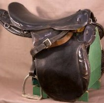 Image of Sir Henry's Pellatt's saddle