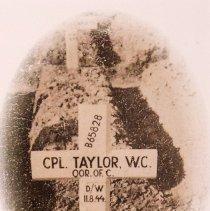 Image of Taylor - Grave Marker