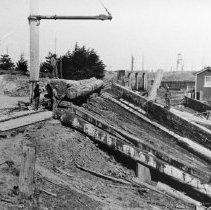Image of Logging - 1973-294-1356-15