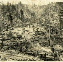 Image of Logging at Marsh Creek