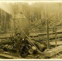 Image of Logging - 1995-001-306