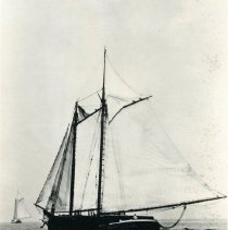 """Image of The Lumber Drogher """"Electra"""""""