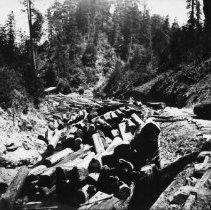 Image of Logging - 1995-001-503