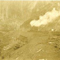 Image of Logging Trains - 1995-001-522