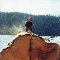 Image of Logging - 2004-01-69