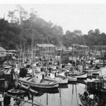 Image of Fishing Fleet at Noyo River