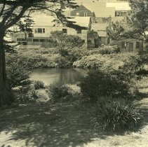 Image of Kelley House Pond