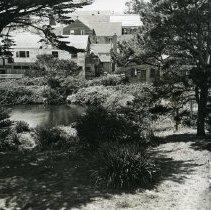 Image of Gardens & Yards - 2007-03-1446-14
