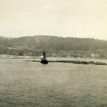 Image of Bensen Log Raft in Mendocino Bay