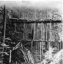 Image of Logging Animals Bridges - 2007-03-36