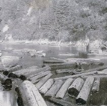 Image of Logging - 2007-03-496