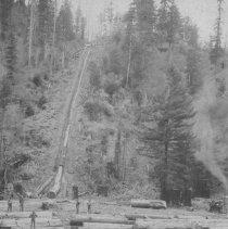 Image of Logging - 2007-03-547