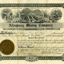 Image of 1988-023-155 - Certificate, Stock