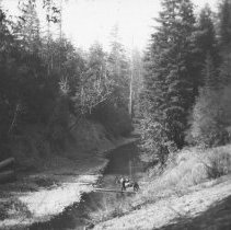 Image of Logging - 2011-026-009
