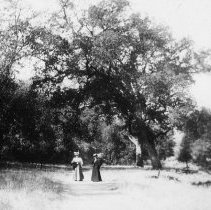 Image of Nellie Ford at Vichy Springs, Ukiah.
