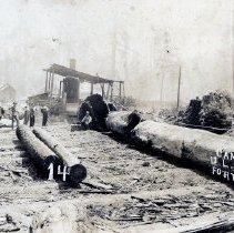 Image of Logging - 2007-03-1402-23