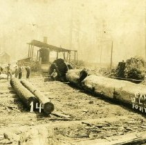Image of Logging - 2007-26-100
