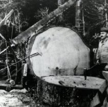 Image of James Relmond Smith and Dragsaw