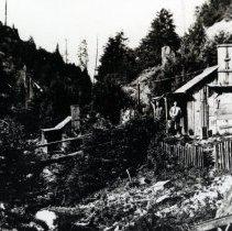Image of Logging - 2007-03-1361-31