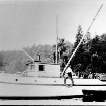 Image of 0443 - Craig family boat at Maplewood