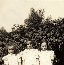 Image of 0163 - Greta, Avril and Ann Springer