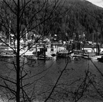 Image of Boat rentals in Deep Cove