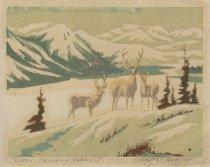Image of Ellen Vaughan Grayson - Deer, Vaseaux Lake, BC