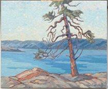 Image of Ellen Vaughan Grayson - Pine #2