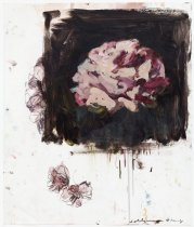Image of Tony Scherman - Untitled [flower]